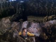 Huge Crocodile3
