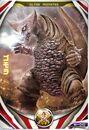 Nasal Gomora Card