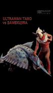 Samekujira v Taro II