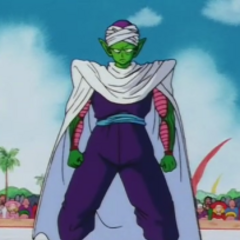 Piccolo in the World Tournament