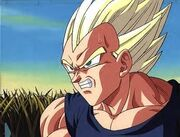 Another SSj Vegeta