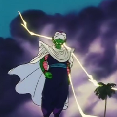 Piccolo at the 23rd World Tournament