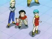 Krillin and the Girls