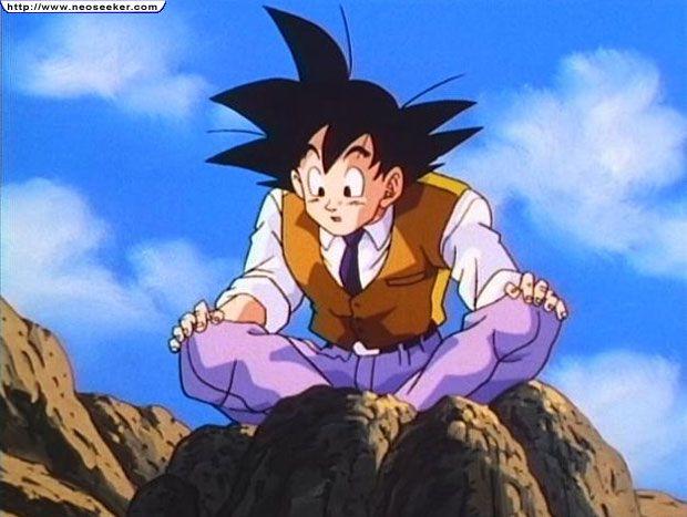 File:Goku in a monkey suit.jpg