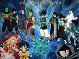 Dragon Ball: User Warriors