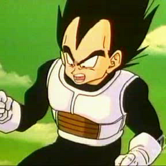 Vegeta while fighting Frieza (Second form).