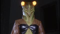 Cicada Woman