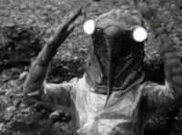 Cicada Human 1966