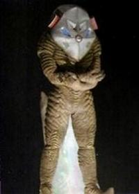Alien Zarab mebius