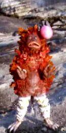 Pigmon12