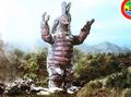 King Maimai Larva 3