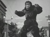 Goro 1966