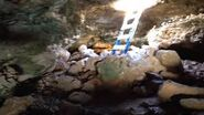 Cueva Faro