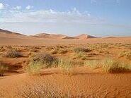 Desierto de la Varia