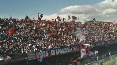 Campobasso Ultras