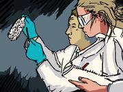 Cerebral Electricity Scientists