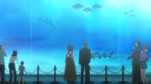 Anime ep2 aquarium