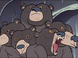 Multi-Urso