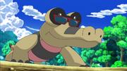 Sunglasses Sandile