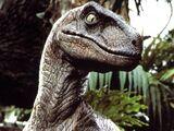 Italian Dinosaurs