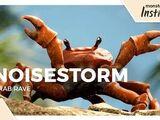 Crab Rave