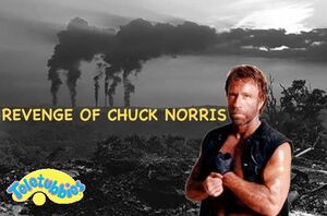 Revenge of chuck Norris
