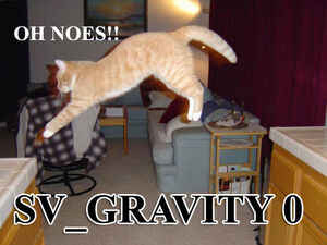 Gravity-cat