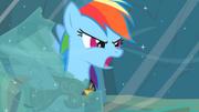 201px-Rainbow Dash Earth ponies are numbskulls! S2E11