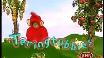 Teringtubbies Do the Flowers Smell Nice?