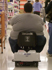 Fat-mobile