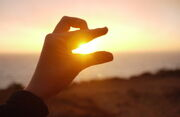 Oobi hand puppet sunset