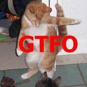 Gtfocat2