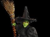 Nintendo's Witch