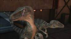 Scarred Italian Dinosaur