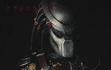 Predator-wide-casting-shane-black-s-predator-reboot-arnie-to-return