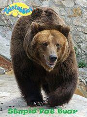 Stupid fat bear
