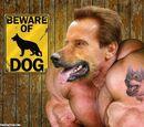 The Doglike-Arnold-Monster