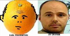 Orangebj