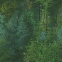 File:Forest background.jpg