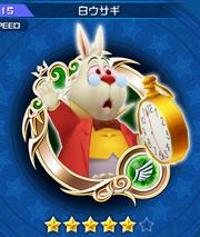 115 White Rabbit