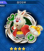 114 White Rabbit New
