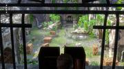 Unlocking the Past gameplay 4
