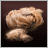 Camel Hair