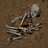 Ancient Human Bone