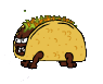 Taco wolf in reckless road trip