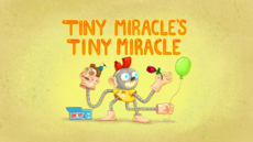Tiny Miracle's Tiny Miracle Title Card HD