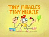 Tiny Miracle's Tiny Miracle