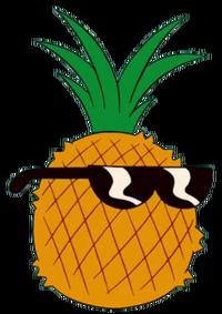 Pineapple steve