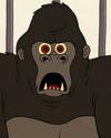 Gorilla 1