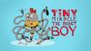 Tiny miracle the robot boy